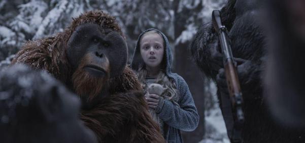 apes1.jpg